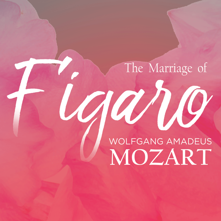 THE MARRIAGE OF FIGARO STUDENT NIGHT