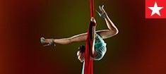 235x105_cirque_promo.jpg