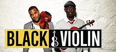 BlackViolin_235.jpg