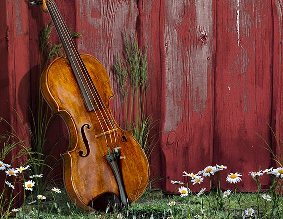 More Info for Charlotte Symphony: Copland Appalachian Spring