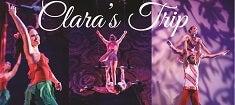 Clara's Trip 2015 235x105.jpg
