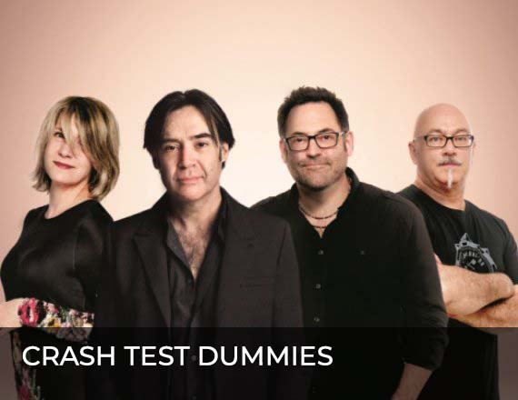 More Info for Crash Test Dummies