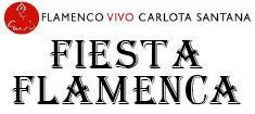 Fiesta-Flamenca_235.jpg