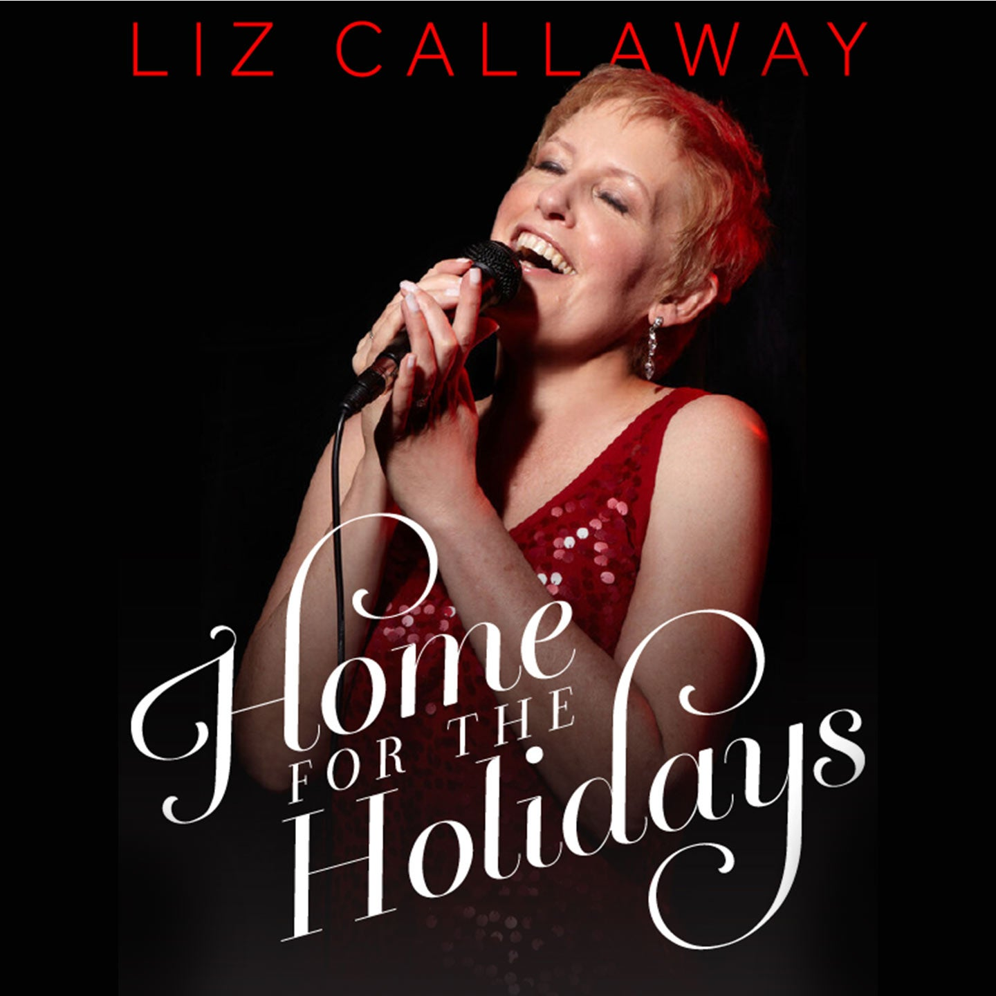 Liz Callaway: Home for the Holidays