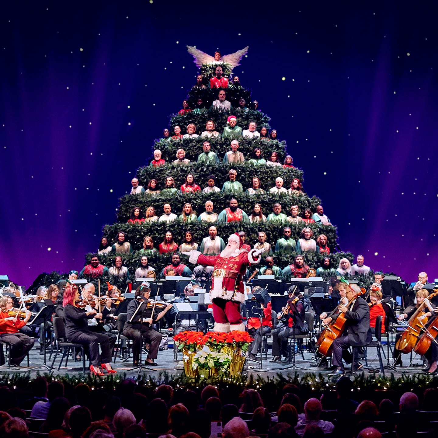 Charlotte Symphony & Carolina Voices: Magic of Christmas and The Singing Christmas Tree
