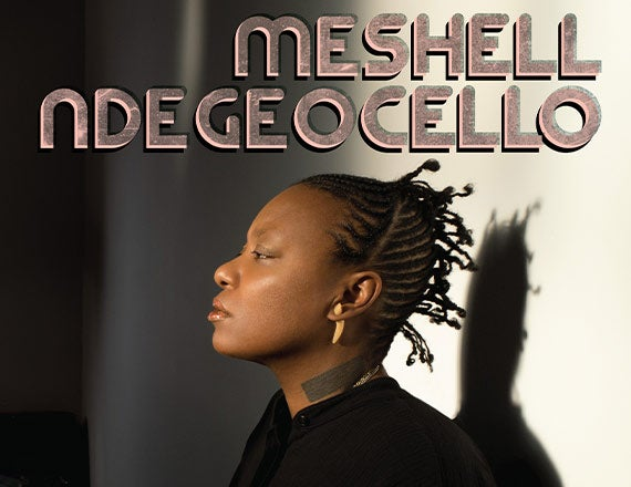 More Info for Meshell Ndegeocello