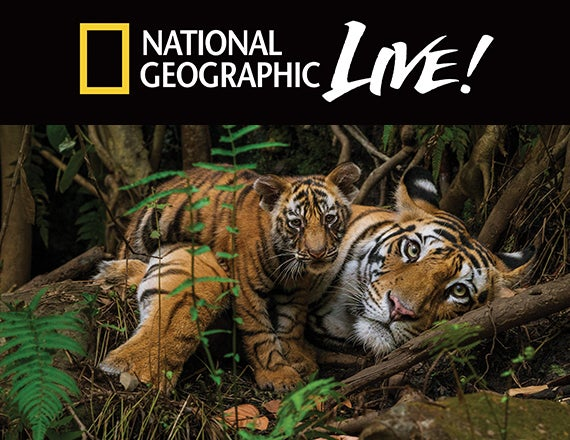 More Info for National Geographic Live! On the Trail of Big Cats