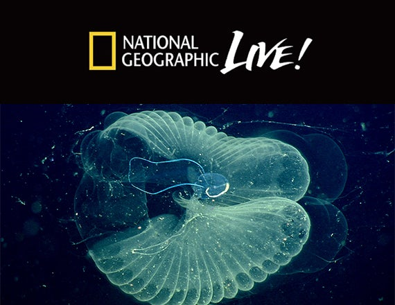 More Info for National Geographic Live: Designed by Nature