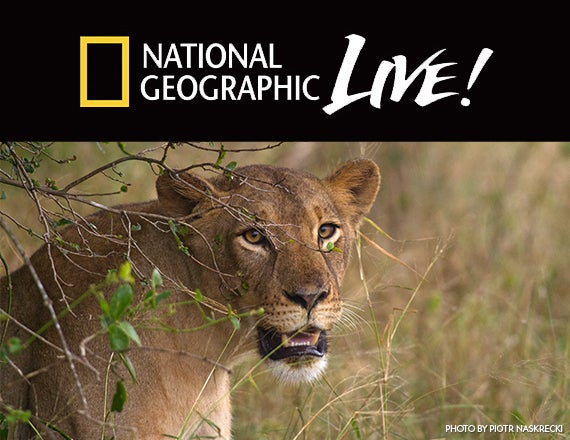 More Info for National Geographic Live: Nature Roars Back