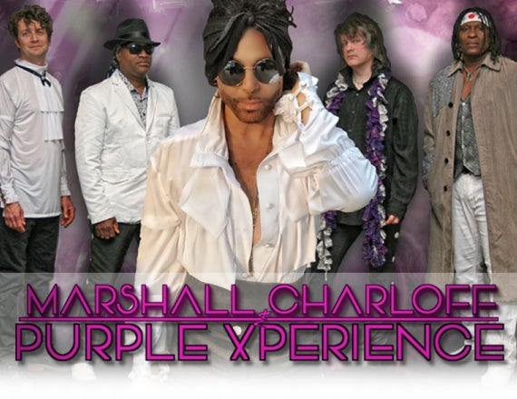 More Info for Purple Xperience