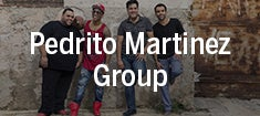 Pedrito-Martinez_235.jpg