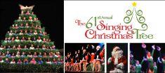Singing Christmas Tree Dec 2015 235x105.jpg