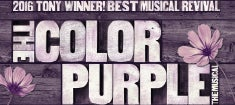 The-Color-Purple_235.jpg