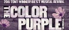 The-Color-Purple_235.jpg