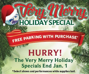 Very-Merry-Holiday-Sale_300x250.jpg
